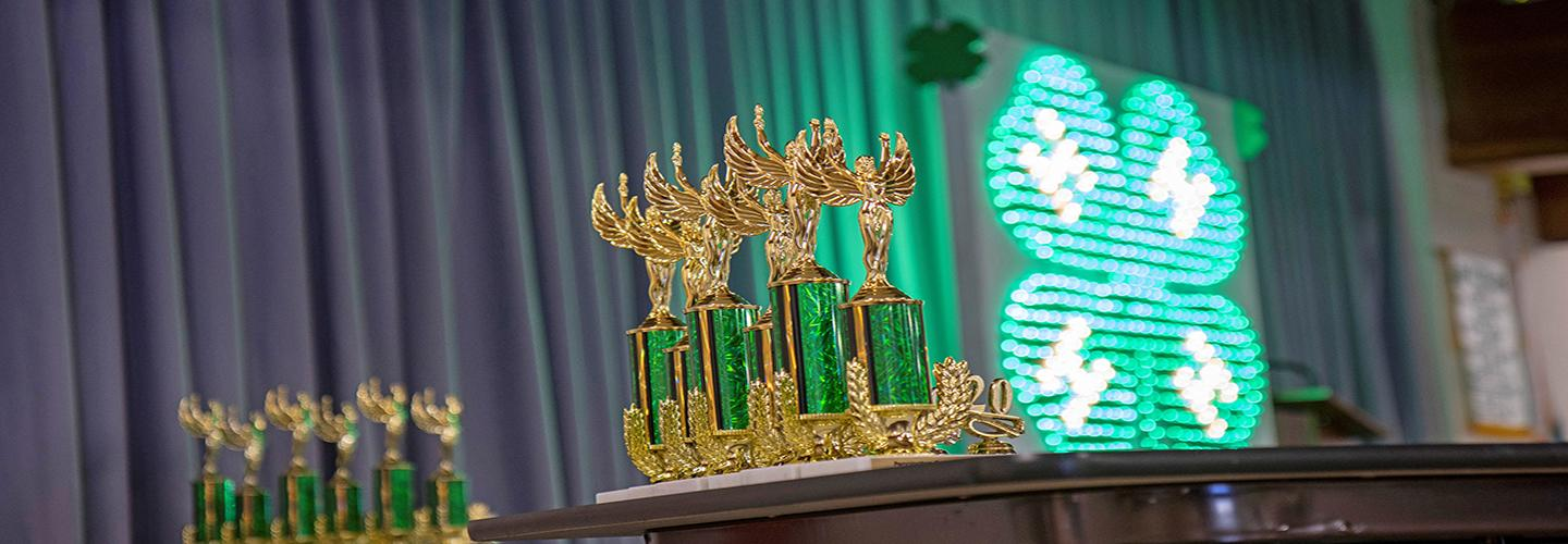 Series of trophies on display at a 4-H contest.