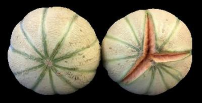 Two white melons with green stripes side-by-side. The one on the right is split open.