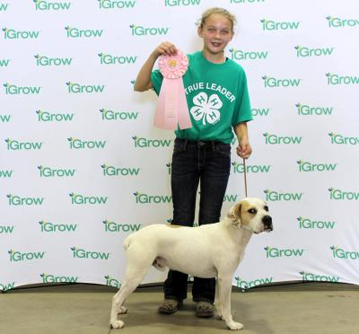 female 4-H youth with her white dog and their pink rosette