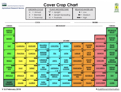 A graphic describing classification, growth cycle, plant architecture, and relative water use of common US cover crops. For more information, visit: https://www.ars.usda.gov/plains-area/mandan-nd/ngprl/docs/cover-crop-chart/