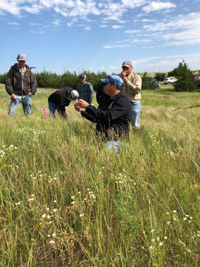 six men in a pasture analyzing the types of grasses.