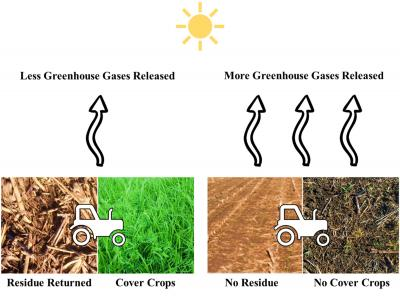 A figure illustrating showing the benefits of cover crops on greenhouse gases released. Fields with cover crops and residue returned release less greenhouse gases than fields with no cover crops or residue.
