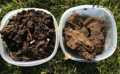 Left: Soil from long-term no-till field, exhibiting good soil aggregation through clumping and smaller pieces of soil. Right: Soil from conventionally managed field that included tillage and crop residue removal. Notice the soil is lighter brown, indicating lower organic matter, and the pieces of soil are in larger chunks with no visible indication of clumping or structure.