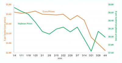 A line graph depicting South Dakota cash corn and soybean prices from January 4 to April 2, 2020. Corn prices begin at $3.60 per bushel and end at $2.80 a pre bushel. Soybean prices begin at $8.80 per bushel and end at $8.00 per bushel. For a complete description, call SDSU Extension at 605-688-6729.