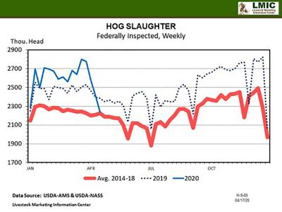 A line graph depicting weekly hog slaughter numbers for 2019 and 2020 compared to industry averages from 2014-18. Most-recent April 2020 numbers show 2250 thousand cattle per week compared to 2400 thousand in 2019 and 2250 thousand on average.