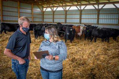 Male and female rancher reviewing clipboard in a cattle barn.