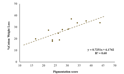 A 2 axis graph with pigmentation scores (numbers between 0 and 100) on the x axis and cotton strip weight loss (percentage) on the y axis. Data shown follows a scattered pattern from about 15% on the y axis to 38% on the y axis across values 17 and 44 on the x axis. The trend line fits and equation of y = 0.7251x + 6.1742 with an R square value of 0.60.