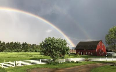 rainbow over green pasture with a red barn