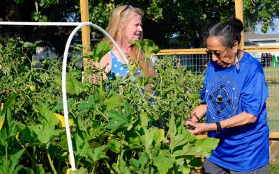 Katherine Montague and Delores Allen checking a garden.