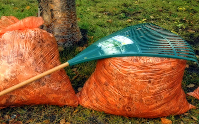 orange leaf bags full of leaves with a green rake lying on top
