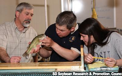 two students look at a fish while a teacher makes an explination