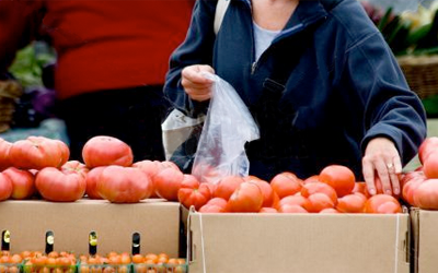 a person putting tomatoes into a bag.