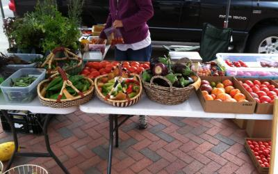 A table display of vegetables at a farmer's market.