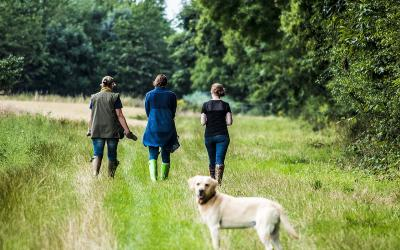 Mother, two daughters, and dog going for a walk in the country.