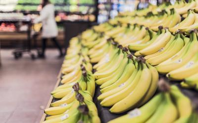 Bananas at a grocery store.