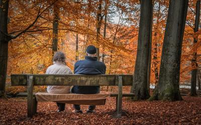 An older couple sitting on a bench gazing out at the fall colors on the tree.