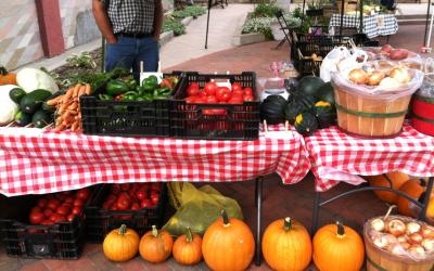 A table at a farmers market filled with fresh vegetable displays.