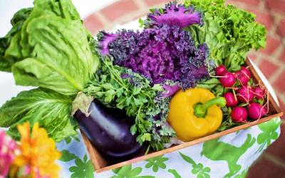 variety of fresh vegetables in basket