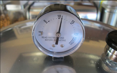 A dial pressure canner gauge
