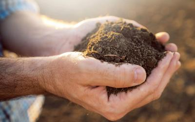 pair of hands holding soil