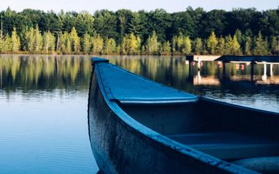 Canoe floating in a lake near a wooded area