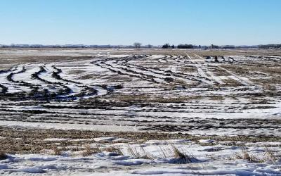 a wet, snow-covered field with deep ruts in the soil