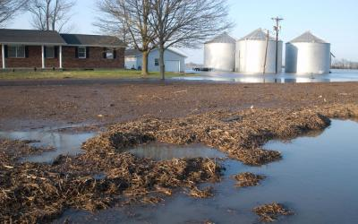 Flooded farm yard. Photo by John Shea, FEMA.