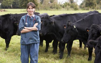 female veterinarian standing in front of a small group of black cows