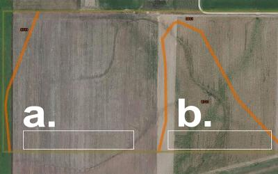 "two side-by-side fields. The left is labeled ""a"". It has uniform rows and soil. The right is labeled ""b"". It has ununiform rows and varying soil quality."