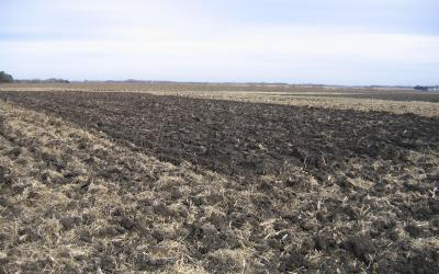 a bare, freshly tilled field awaiting planting.