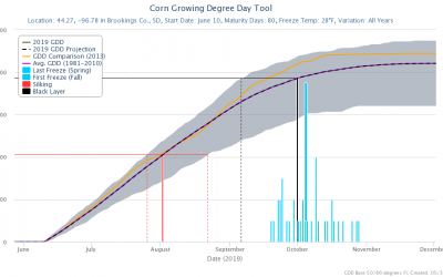 Corn growing degree day tool for Brookings County, S.D. Options selected include 80-day maturity hybrid planted on June 10, and comparison with 2013 growing season accumulated growing degree days.