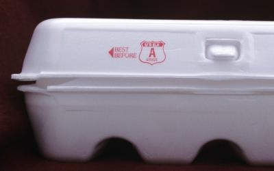 "A white egg carton against a black background. The carton has read text reading, ""Best Before"" along with a red seal reading ""USDA 'A' Grade""."