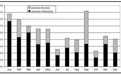 Bar graph outlining laminitis treatment in 10 herds by month and cause. For a complete description, call SDSU Extension at 605-688-6729.