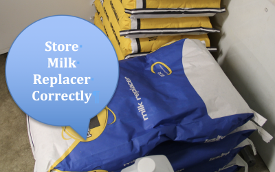 Milk Replacer being stored poorly on the floor in a facility. Courtesy: Tracey Erickson