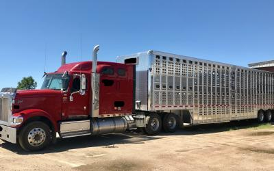 a red semi truck with a cattle trailer attached behind it