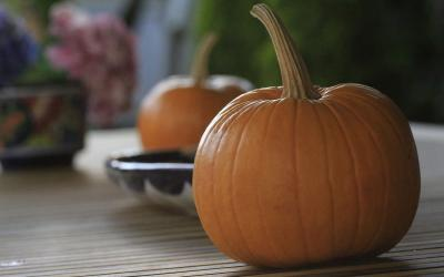 To small pumpkins sitting on a kitchen counter.