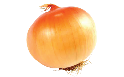 A yellow onion bulb.
