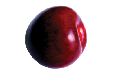 A red-purple plum.