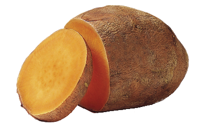 An orange sweet potato.