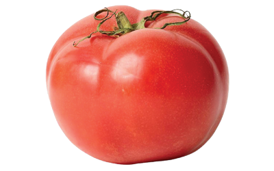 A red tomato fruit.