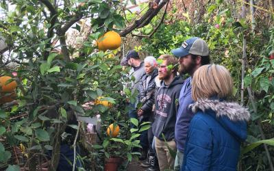 A group of tribal educators and wellness coalition members visiting a geothermal greenhouse growing and selling citrus fruits in cold Northern Nebraska in January.