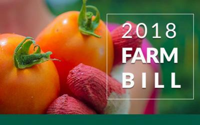 "A pair of hands wearing garden gloves holding tomatoes. A white text overlay reads ""2018 Farm Bill."" This image is courtesy of the USDA Farm Service Agency."