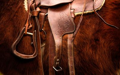 a brown saddle on a brown horse