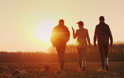 Three young farmers walking through a harvested field at sunset.