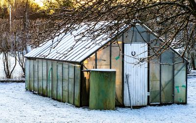Small greenhouse in a snow-covered yard.