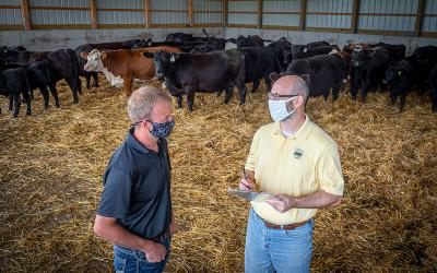 Producer and FSA agent discussing Coronavirus Food Assistance Program signup in a cattle shed.
