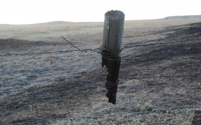 fence post burnt by wild fire